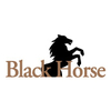 BlackHorse at Bayonet/Black Horse Golf Course - Public Logo